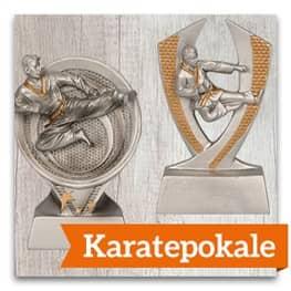Karate Pokale
