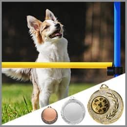 Hunde Medaillen