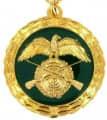 Medaille - Farbe - gold-grün