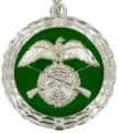 Medaille - Farbe - silber-grün