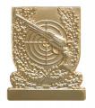 Meisterschaftsabzeichen Revolver - Farbe - gold