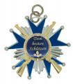 Schützenorden Stern mit Gewehren - Ausführung - silber/blau