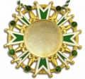 Karnevalsorden - Ehrenstern mit Schmucksteinen - Farbe - grün-weiß-gold