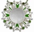 Karnevalsorden - Ehrenstern mit Schmucksteinen - Farbe - grün-weiß-silber