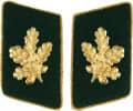 Kragenspiegel schützengrün mit Eichenlaub - Ausführung - gold