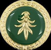 Auflage Schwanz grün