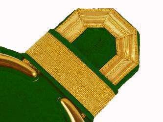 Tressenspangen gold für Epauletten
