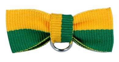Bandschleife gelb-grün
