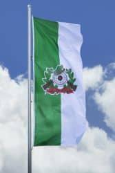 Schützenfahne mit Schützenlogo - Hissfahne hoch grün-weiß