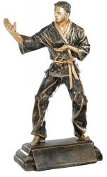Trophäe Karateka FS52533 bronze