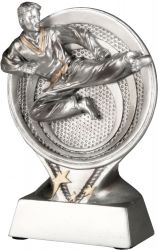 Karateka TRY-RS1601 silber