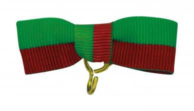 Bandschleife rot-grün