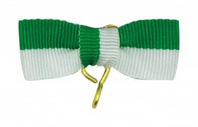Bandschleife grün-weiß