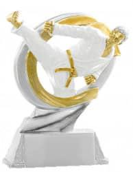 Trophäe Karateka männlich FS71413 silber