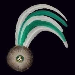 grün-weiße Hahnenschlappe - Schützenfeder mit 5 langen Federn + Flaum