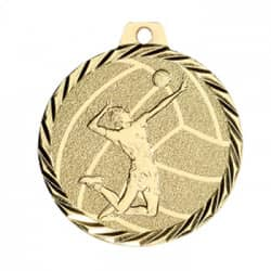"Medaille ""Volleyball"""