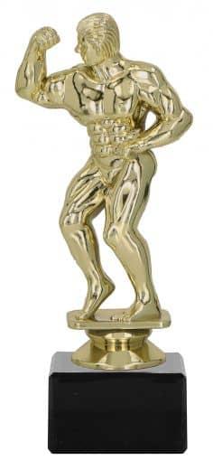Bodybuildingpokal TRY-F43 gold