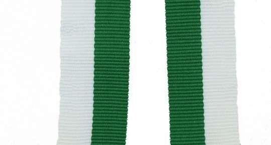 Band mit 2 Ösen grün-weiß