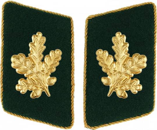 Kragenspiegel schützengrün mit Eichenlaub gold