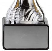 Pokale 6er Serie A295 silber/gold mit Deckel 19 cm