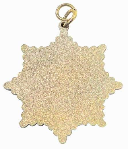 Karnevalsorden - großer Sternorden mit Karnevalsmotiv gold