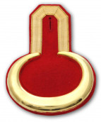 Epauletten gold mit rotem Filz