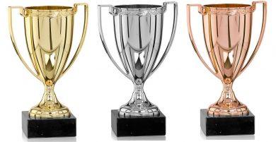 Pokale mit Henkel 3er Serie FS106