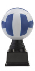 "Ballpokal ""Volleyball"" PF303.2-M60 bunt"