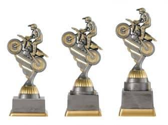 Motocrosspokal PF236-M61 altsilber/gold