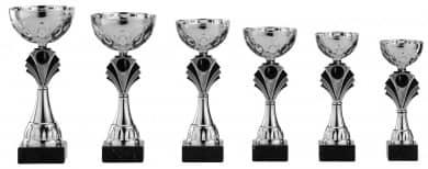 Pokale 6er Serie S481 silber