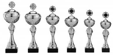 Pokale 6er Serie S484 silber mit Deckel