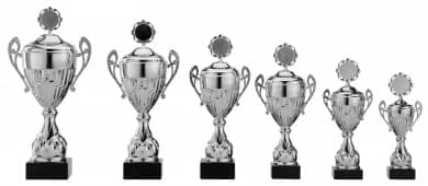 Pokale mit Henkel 6er Serie S758-6er silber mit Deckel