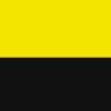 Band mit Ring gelb-schwarz