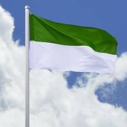 Schützenfahne grün-weiß Hissfahne Quer - Flagge