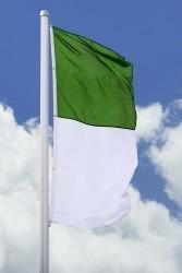 Schützenfahne - Hissfahne hoch grün-weiß