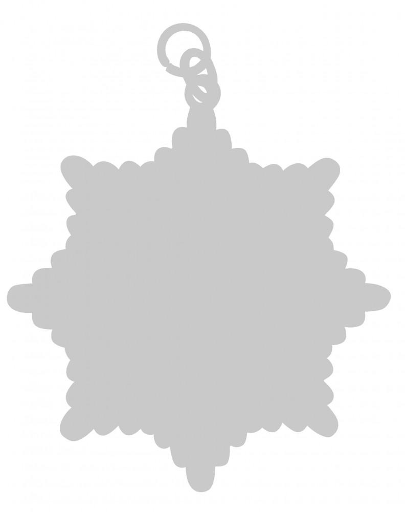 Karnevalsorden - großer Sternorden silber mit gekreuzten Zeptern