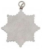 Karnevalsorden - kleiner Sternorden mit gekreuzten Zeptern+Kronen silber