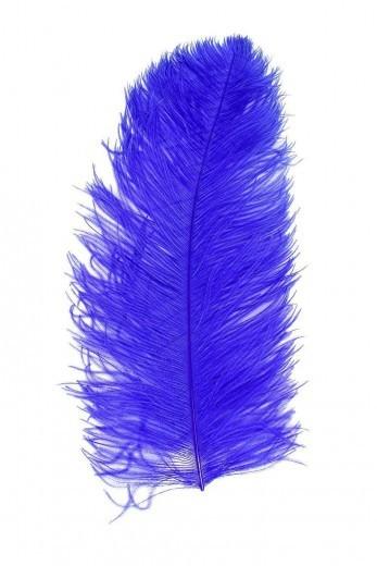 Straußenfeder Karneval blau