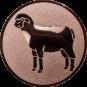 Emblem 50mm Schaf, bronze