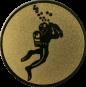 Emblem 50mm Taucher, gold
