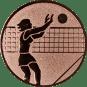 Emblem 50mm Volleyballer Block, bronze