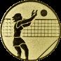 Emblem 50mm Volleyballer Block, gold