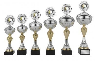 Pokale 6er Serie S420 silber/gold