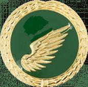 Auflage rechter Flügel grün
