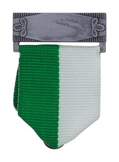 Bandschluppe mit Gravurfeld in altsilber grün/weiß