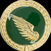 Auflage linker Flügel grün