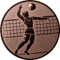 Emblem 25mm Volleyballer, bronze