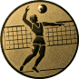 Emblem 25mm Volleyballer, gold