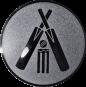 Emblem 50mm Cricket, silber