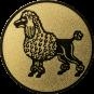 Emblem 50mm Pudel, gold